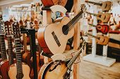 Many Colorful Wooden Guitars Put On Guitar Stand In Store Showroom. Background Guitar Shop And Music poster