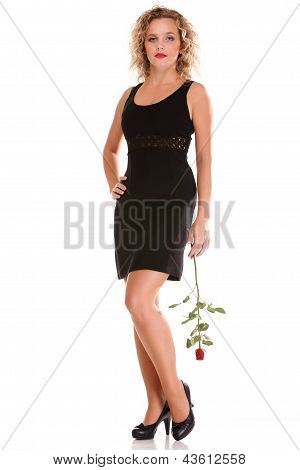 Beautiful Young Woman Blonde Romantic Rose