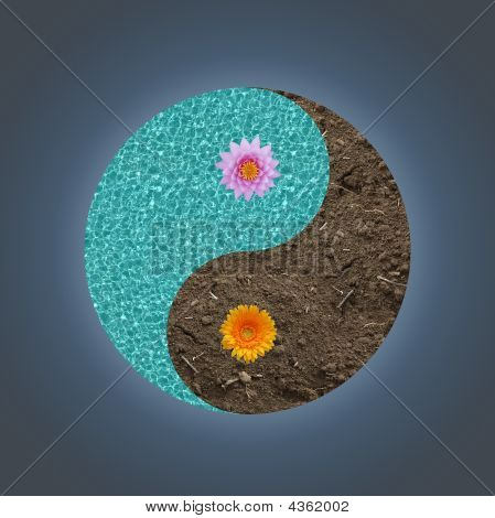 Yin-yang Flower