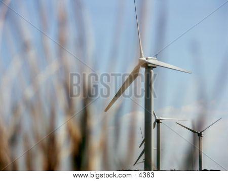 Windmill Depth Of Field poster