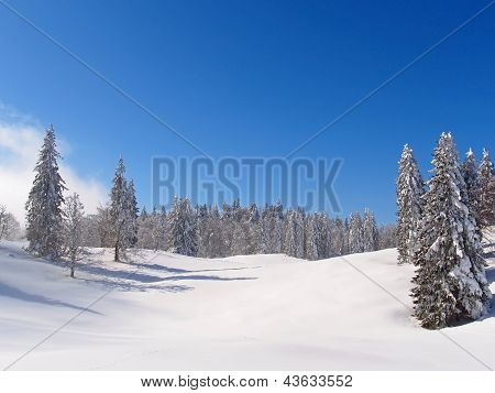 Jura Mountain In Winter, Mont D Or Area