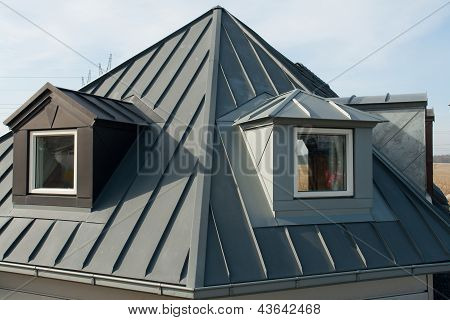 Modern Vertical Roof Windows
