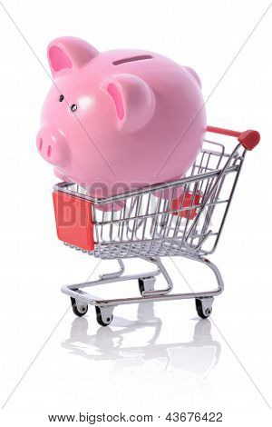 Piggy Shopping Trolly