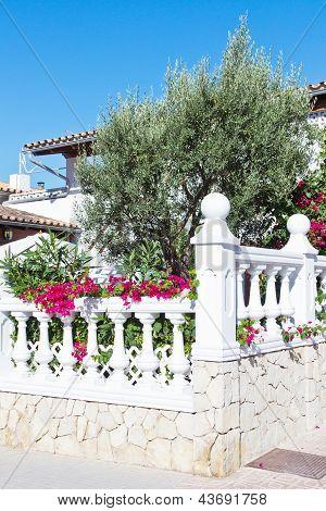 Garden Of A Spanish House