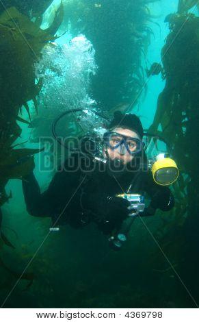 Underwater Photographer In Catalina Vertical