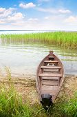 pic of boggy  - boat in a high cane on the bank of lake - JPG
