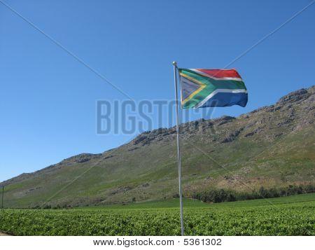 Sa Flag And Hill