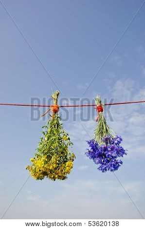 St Johns Wort And Cornflower Bunches On String