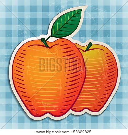 vector vintage apples sticker