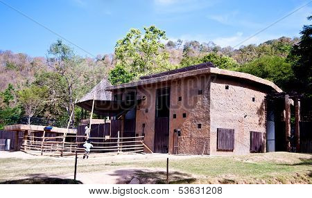 House of animal