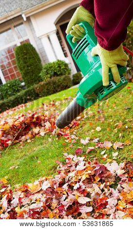 Electrical Blower Cleaning Leaves From Front Yard During Autumn Season