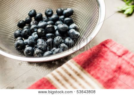 Blueberries in sifter