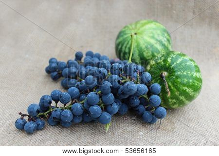 two watermelons and grape on the gray background