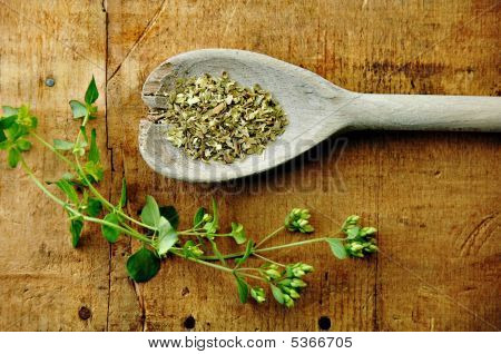 Oregano Sprig With Dried On A Wood Table