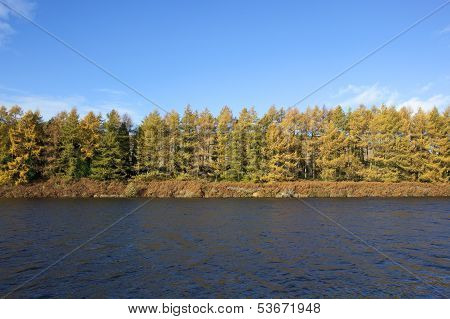 Fall Trees By Blue Water