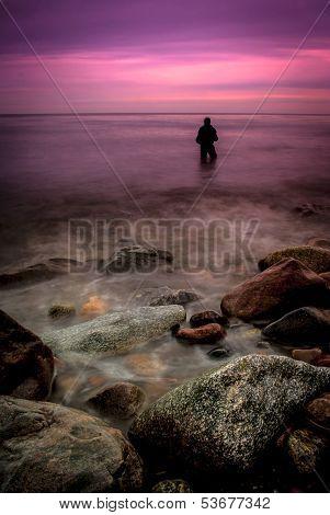 Pink angler