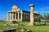 picture of ceres  - roman temple of Ceres at Paestum Italy - JPG