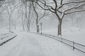 Постер, плакат: Snow In Central Park Peaceful Winter Atmosphere New York
