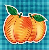 vector vintage peaches sticker