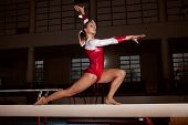 stock photo of gymnastic  - portrait of young gymnasts training in the stadium - JPG