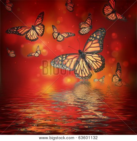 Flight of butterflies is in the rays of light