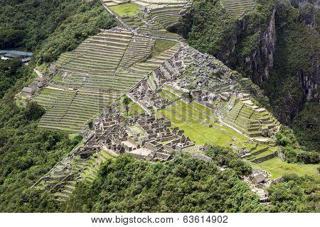 Citadel of Machupicchu