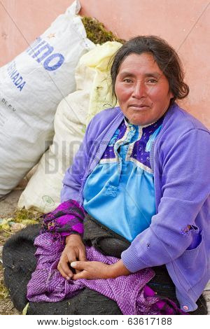 Mayan Woman In Traditional Skirt and Blouse