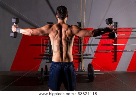 hex dumbbells man workout rear view back exercise at gym box