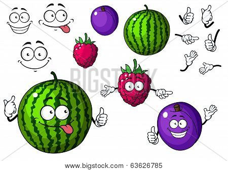 Watermelon, raspberry and plum fruits