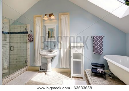 Velux Bathroom With Antique Bath Tub