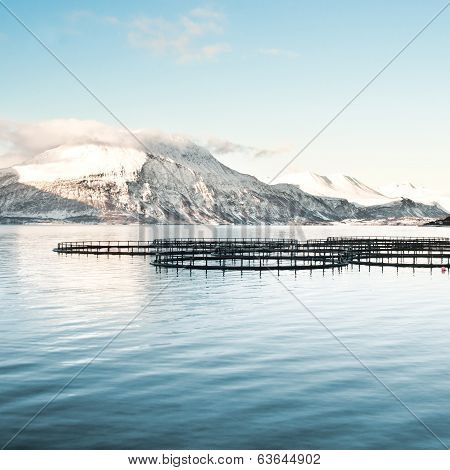 Fish farms in north Norway