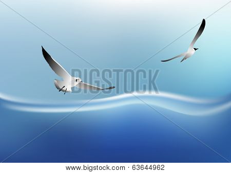 Seagull Flying On The Sea