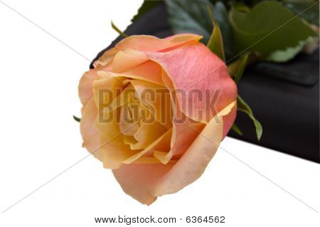 The Rose Lays On A Black Purse