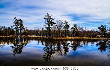 Wilderness Lakeshore