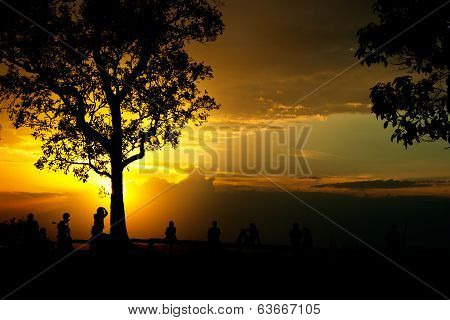 People And Tree Silhouette