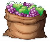 Illustration of a sack of grapes on a white background
