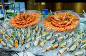 picture of buffet  - Seafood buffet line  - JPG