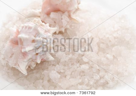 Bath Salt and Seashells