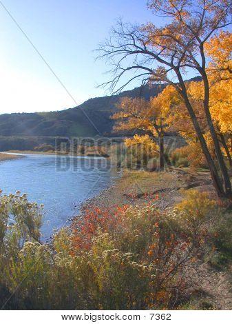 Colorado River In Fall