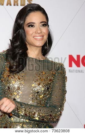 LOS ANGELES - OCT 10:  Edy Ganem at the 2014 NCLR ALMA Awards Press Room at Civic Auditorium on October 10, 2014 in Pasadena, CA
