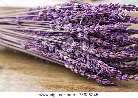Lavender Bouquet Closeup