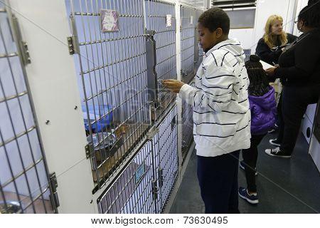 Kids visit inside van