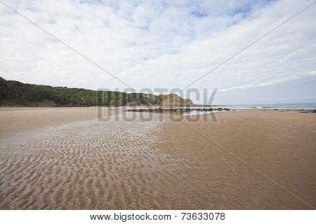 Textured Sandy Beach Seascape