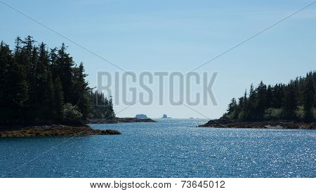 The Forests of Prince William Sound