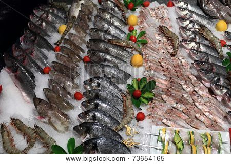Supermarket Fish Counter