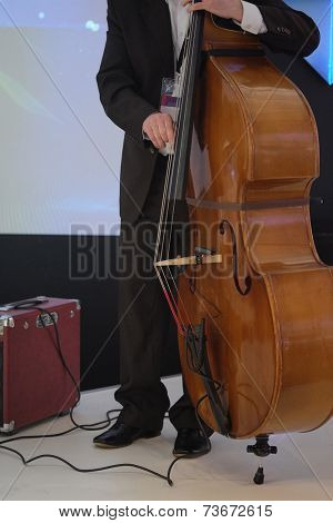 image of a man playing on a double-bass