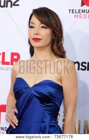 LOS ANGELES - OCT 10:  Katherine Castro at the ALMA Awards Arrivals 2014 at Civic Auditorium on October 10, 2014 in Pasadena, CA