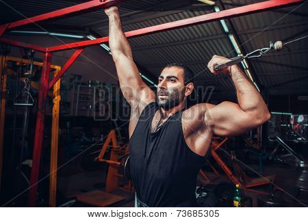 Body Builder Working Out At Gym