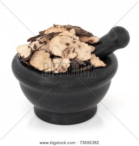 Zhu ling mushroom fungus used in chinese herbal medicine in a marble mortar with pestle over white background. Polyporas sclerotium.