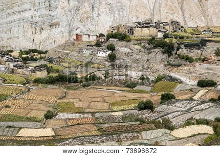Citadel and monastery of Tetang village In Mustang